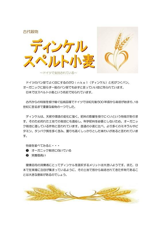 Microsoft Word - 古代穀物ディンケル_imgs-0001